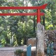 Jardim Japonês – Bosque